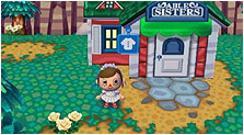Animal Crossing: City Folk Art & Characters Pictures