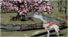 Okami Art, Pictures, & Characters
